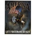 """Grande Plaque Métallique USA """"Let Freedom Reign"""""""
